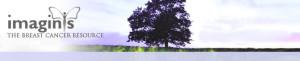 Link-Logo-Imagins