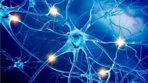 sympathetic nervous system sedation